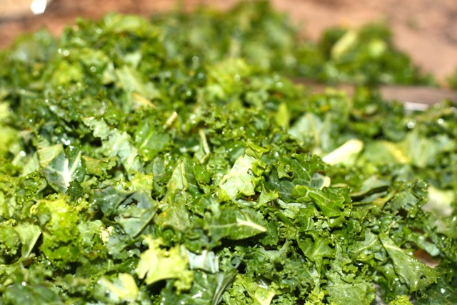 kale, chopped
