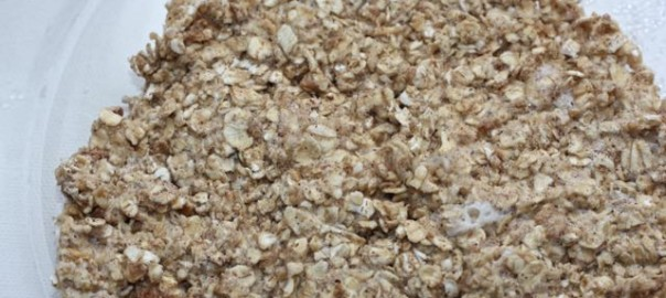 Oatmeal bread plain