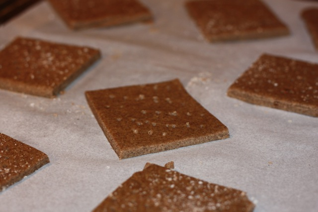 Homemade Graham Crackers (FODMAP friendly)