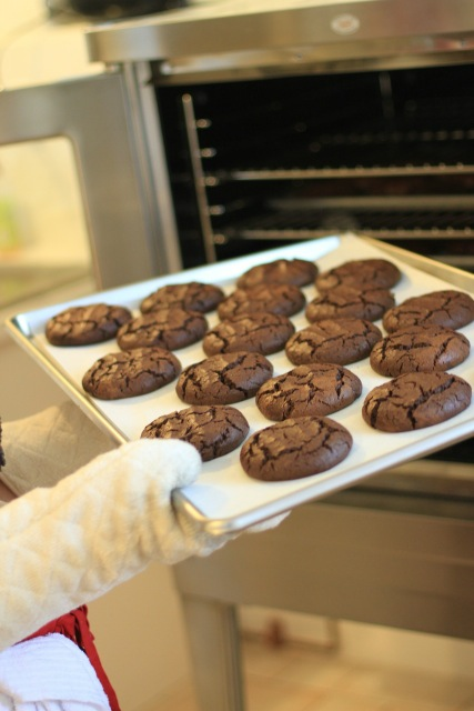 bonnieville cookies from the oven