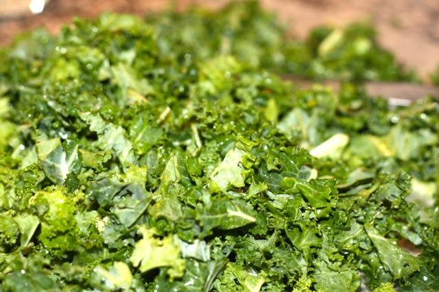 kale, chopped