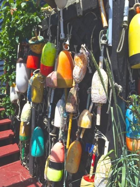 Maine buoys